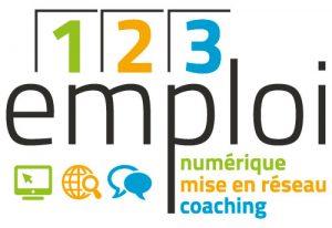 123 emploi centre social et culturel lazare garreau lille sud